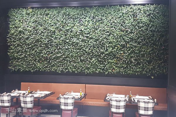 Harrods餐厅植物墙