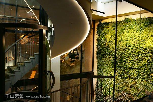别墅植物墙
