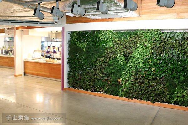Facebook办公室植物墙