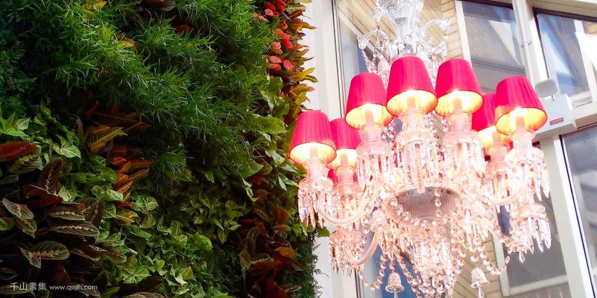 意大利餐厅植物墙