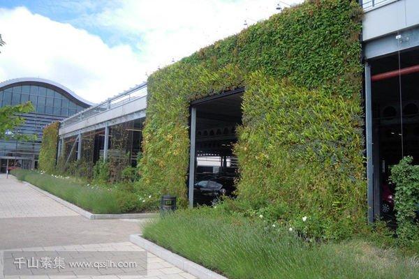 百货商店植物墙