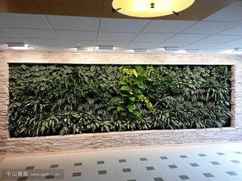 植物墙行业