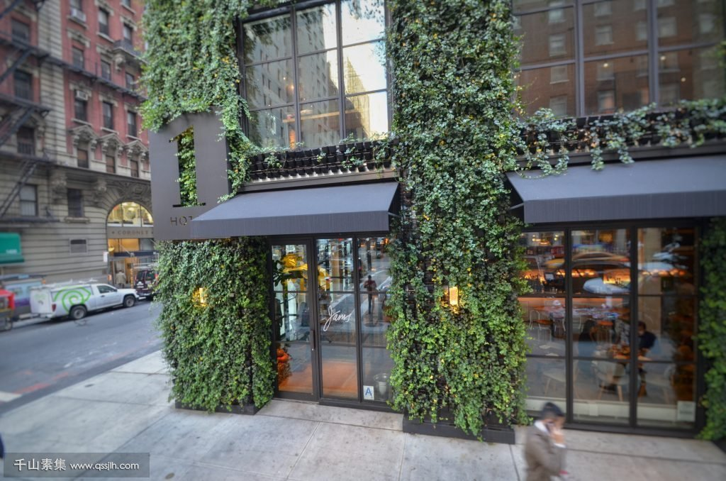 Thousands-of-Ivy-Plants-Create-this-Urban-Landscape-Green-Wall-1024x678.jpeg
