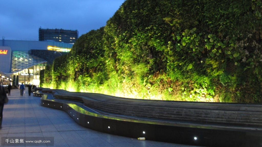 Living-Wall-at-Westfield-Shopping-Centre-by-AECOM-5.jpg